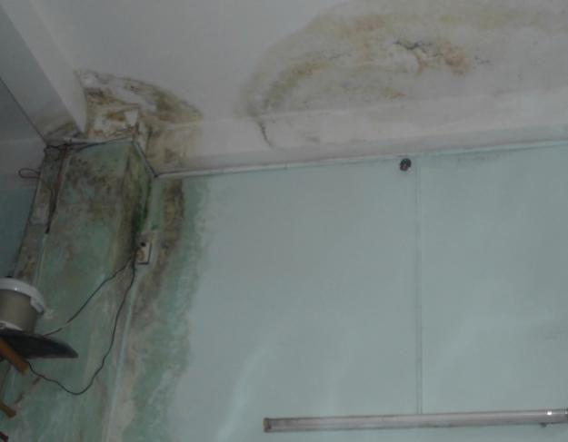 cách xử lý triệt để tường nhà bị thấm nước sau mưa.