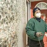 nguyên nhân và giải pháp chống nấm mốc tường nhà