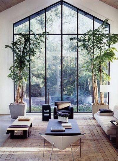 thiết kế nhà tinh tế theo phong cách nhật với cây xanh.